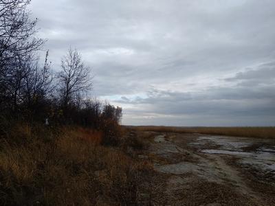 Утро на берегу озера-4